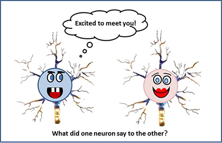 neuron_cartoon