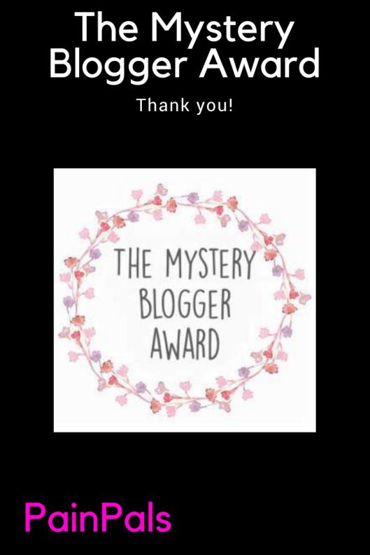 Mystery blogger pin
