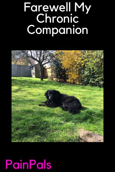Farewell My Chronic Companion